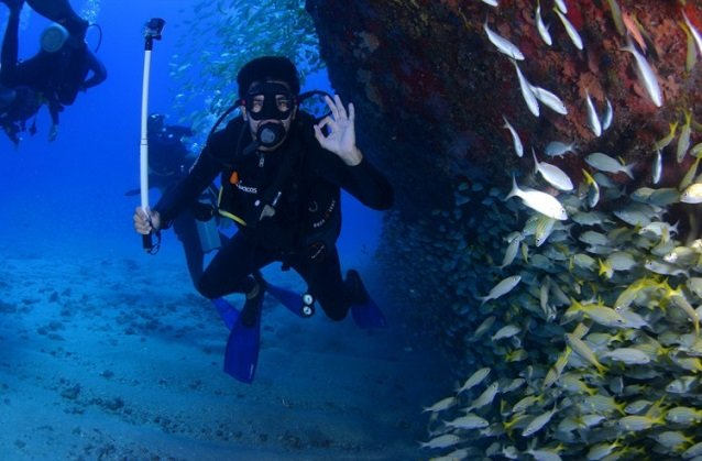 Once you reach financial freedom you can spend your days diving in Madeira.