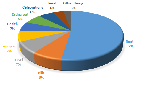 Distribution of my expenses during 2019